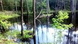 Mile 1518 Beaver Pond
