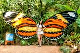 Parque das Aves em Foz do Iguaçú