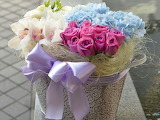Flower Photography @ Pinterest...