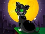 Black Cat, Full Moon