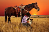 horse and cowboy at sunset