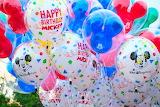 Balloons in Disney World
