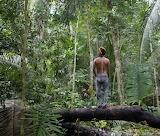 Brazilië Rondonia Op-Wacht-tegen-Illegale-Houtkap