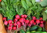 healthy food-red radish