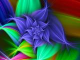 Digital Blossom...