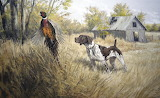 Hunting-dog-pheasant