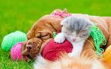 ☺♥ Cute best friends...