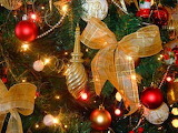 Christmas-tree-with-glamour-
