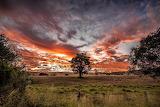 Rosewood Qld Australia