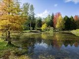 Arboretum des Grandes Bruyères à Ingrannes (Loiret)