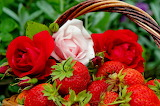 ☺ Pretty roses and strawberries...