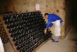 Europe - France - Reims - Taittinger Champagne10