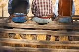 Cowboys sitting on a fence