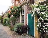 Walkway with roses Groningen Netherlands