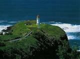 Kilauea-Point-National-Wildlife-Refuge-4