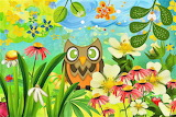 Owls paradise