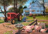 The-farmhouse-steve-read