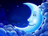 90278391 moon
