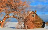 Cabin In The Snow Squirrel Idaho USA