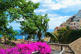 Bougainvillea - Photo from Piqsels id-jzrdg