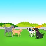 70 Pieces-Mozzi's having fun with doggie friends