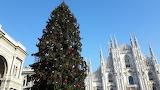 Christmas Milaan