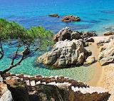 Beautiful beach cove