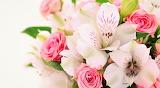 Bouquet Of Flowers ❤
