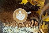 Autumn Spice Cappuccino
