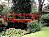 Japanese Garden, County Kildare, Ireland