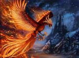 Birds Phoenix mythology Magical animals Wings 547771 1280x952