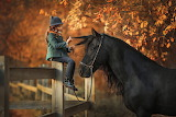 Girl, child, horse, autumn, leaves, nature, tree, foliage, fence