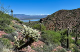 Sonoran Desert View of Roosevelt Lake Arizona USA