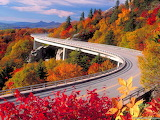 road+nature