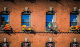 Fall Comes to Prince Street Window Boxes