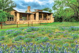 House flowers rural Texas Hill Country