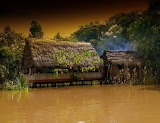 Home on Amazon River