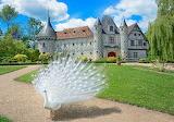Chateau St-Germain-de-Livet - France