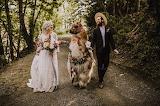 No Drama Wedding Llama