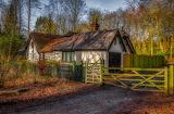 Alder Forest, Salford Metropolitan Borough, England