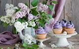 Lilac and cupcakes