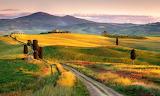 Tuscany, countryside, hills, path, trees, farm, landscape