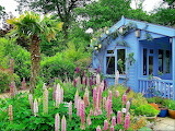 Blue cottage with flower garden