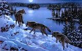 Paisaje-de-invierno