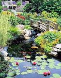 English Garden of Zen