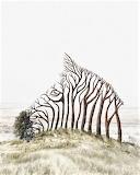Zebra Trees