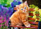 ☺♥ So cute...
