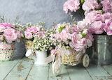 Flowers, petals, bucket, pink, vintage, romantic, bike