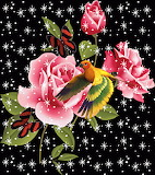 Pink Roses and Orange Bird