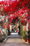 #Nafplio, Peloponnese, Greece